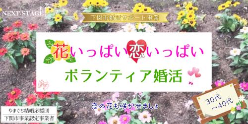 花いっぱい3040